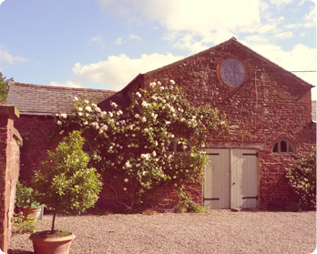 self catering cottage forest of dean